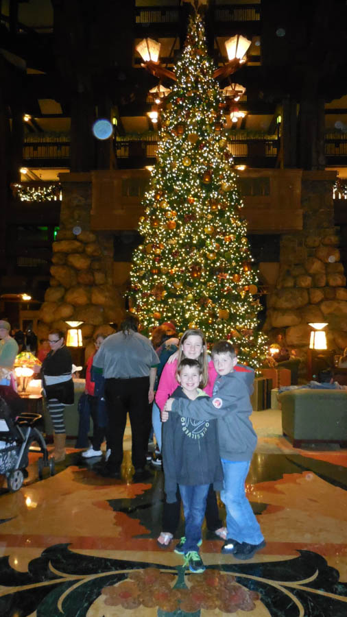 Christmas Tree Grand Californian