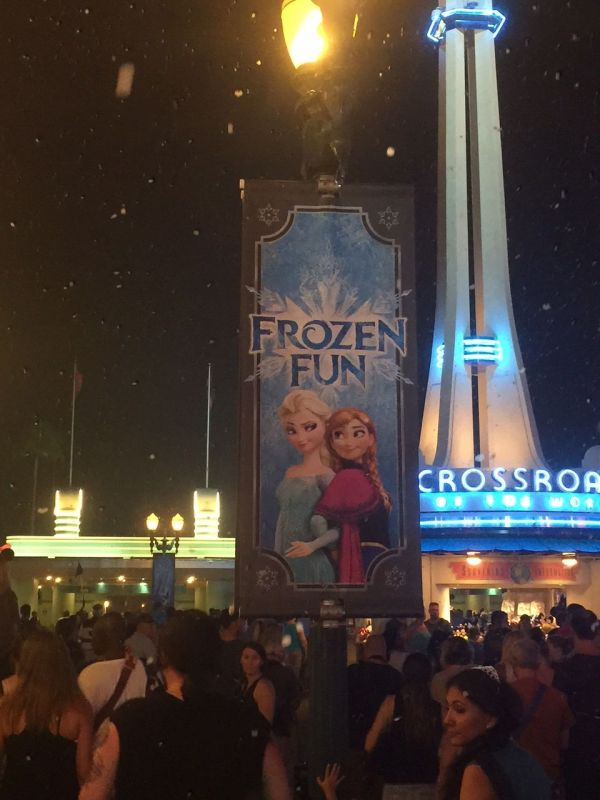 Frozen sign